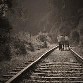 Quelques illustrations factuelles de la politique anti-ferroviaire